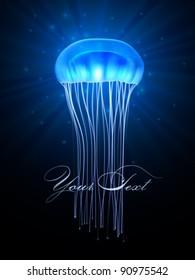 vector jellyfish illustration