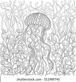 Vector jellyfish, medusa in zentangle style. Hand drawn Sea animal in water among seaweed for adult antistress coloring page book, art therapy. Freehand illustration. Monochrome sketch, t-shirt print.