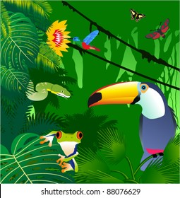Vector Jungle with Frog, Toucan, humming-birds, butterflies and Green Snake
