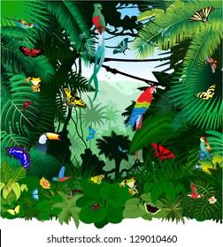 Vector Jungle Rainforest with Frog, Toucan, quetzal, humming-birds, butterflies, Ara and Green Snake