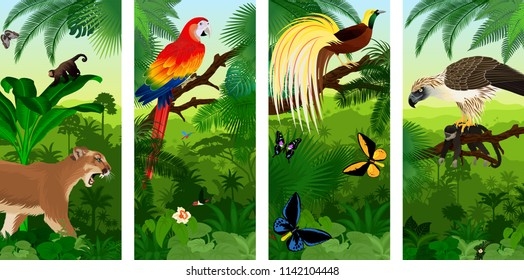 Vector Jungle rainforest vertical baner with  Lesser Bird of Paradisea,puma cougart,  parrot red scarlet macaw arae , hummingbirds, birdwing butterflies and  philippine Eagle with monkey