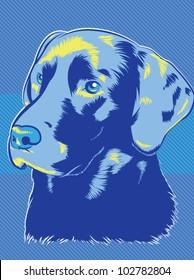 Vector Labrador Dog Pop Art Style