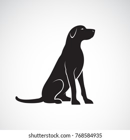 Vector of a labrador retriever dog isolated on a white background.