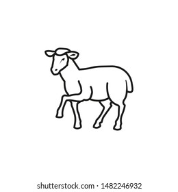 Vector lamb outline icon, sheep icon. Isolated lamb label