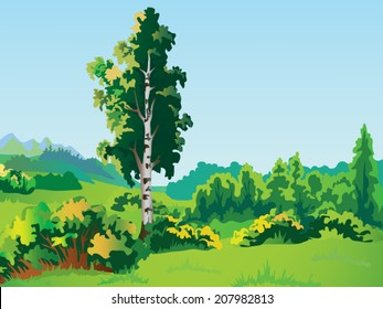 vector landscape with birch tree