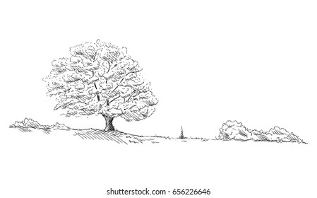 vector -  landscape - isolated on background