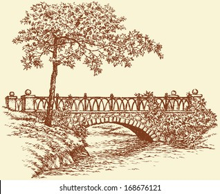 Vector landscape. A maple near the ancient stone bridge over a small river in the park