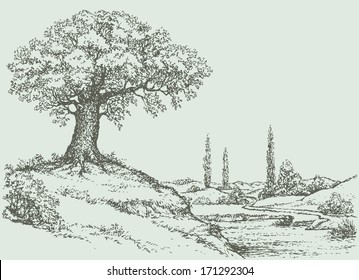 Vector landscape. Mighty oak tree grows on top of a hill above the river valley