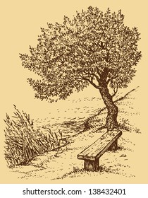 Vector landscape. Old bench near the tree on the bank of the lake