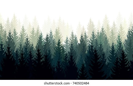 Vector landscape with silhouettes of green coniferous trees in the mist