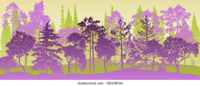 vector landscapes with pine and fir trees, abstract nature background, forest template, hand drawn illustration