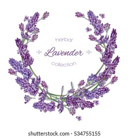 Vector lavender flower round  frame on white background. Design for natural cosmetic, health care products, perfume. Can be used as greeting card or wedding invitation.