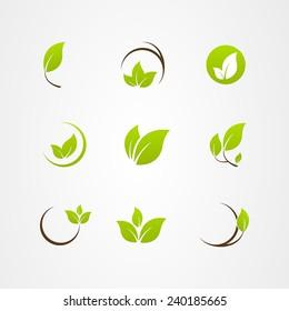 Vector leaf icon logo