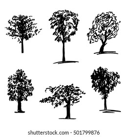 Vector leaved trees set. Chestnut, linden trees isolated on white