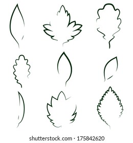 Vector leaves  silhouettes
