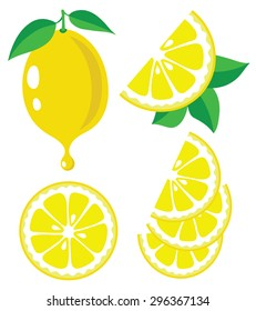 Vector lemon. Lemon fruit slices and drop of lemon juice, vector illustrations