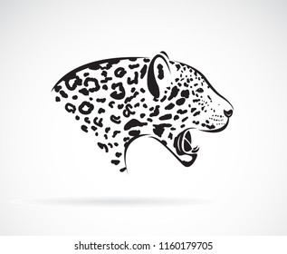 Vector of a leopard on white background. Wild Animals. Easy editable layered vector illustration.