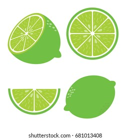 Vector lime. Fresh lime fruits, vector illustrations