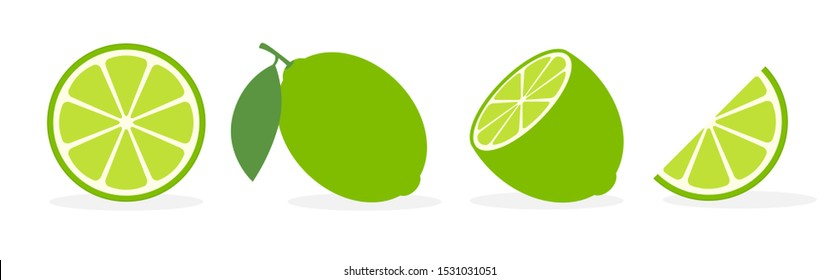 Vector lime slice green illustration lemon isolated half fruit lime. Fresh green cut citrus icon.