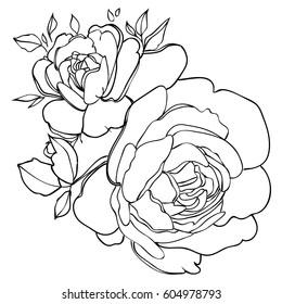 Vector line art flowers.