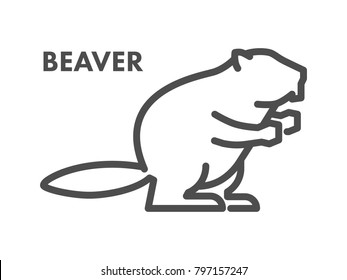 Vector line icon of beaver on white background.