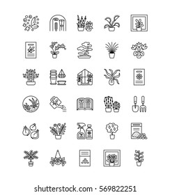 Vector line icons with house plants and flowers. Indoor flowering and green foliage plants. Gardening tools and accessories. Lucky bamboo, bonsai, fern, cactus, succulent, orchid, palm.