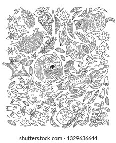 Vector linear drawing, set of australian animals in decorative style. Koala, wombat, kangaroo, Tasmanian devil and other native animals. Ideal for coloring print