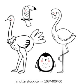 Vector linear drawing, set of cute children's illustrations of African animals, penguin, flamingo and ostrich, toucan. Set of isolated objects