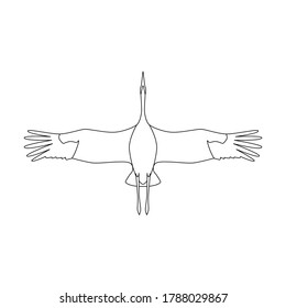 vector linear illustration, bird crane flying on a sky, bottom view.