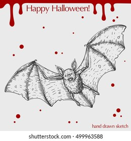 Vector linear illustration of the flying bat with blood stains,spots,drops and text Happy Halloween on the grey background. Hand drawn sketch of the scary bat.