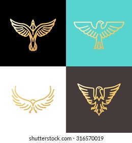 Vector linear logo design templates made with golden foil - eagles and birds - abstract power and freedom symbols
