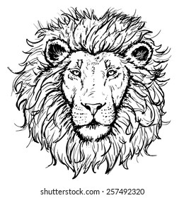 Lion Face Outline Images Stock Photos Vectors Shutterstock Download in under 30 seconds. https www shutterstock com image vector vector lion hand drawn illustration 257492320