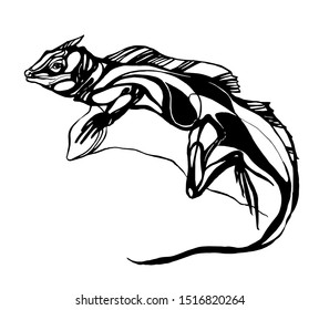 Vector lizard graphics on a white background reptile stylization tattoo