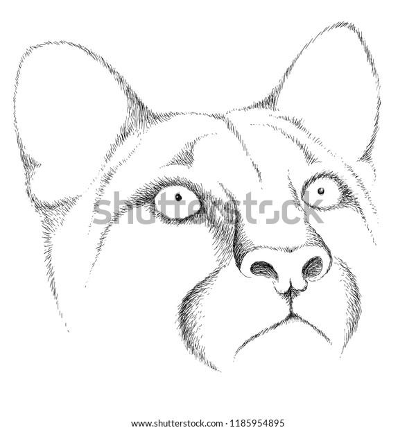 Vector Logo Big Cat Tattoo Tshirt Stock Vector Royalty Free 1185954895