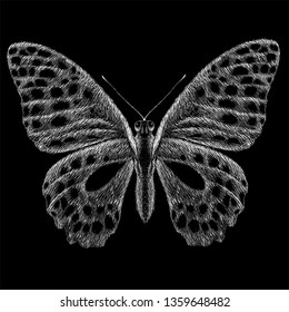 The Vector logo butterfly for tattoo or T-shirt design or outwear.  Cute print style butterflys background.