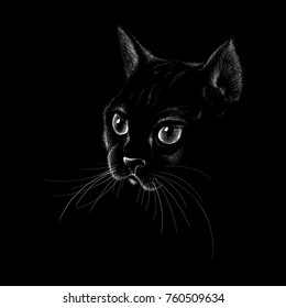 8dd4247f The Vector logo cat for tattoo or T-shirt design or outwear. Cute print