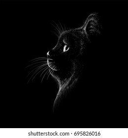 The Vector logo cat for T-shirt design or outwear.  Hunting cats style background.