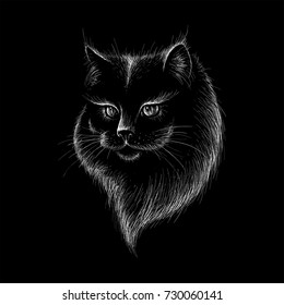 The Vector logo cat for T-shirt design or outwear.  Halloween cats style background.