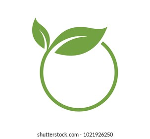 vector logo design leaf circle, green tea herbal, natural medicine, sprout with green leafs