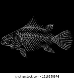 The Vector logo fish skeleton for tattoo or T-shirt design or outwear.  Cute print style fish skeleton  background. This drawing would be nice to make on the black fabric or canvas.