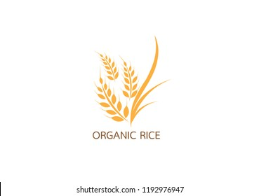 Vector logo  label or package with yellow rice  wheat  rye grains. Concept for asian agriculture  organic cereal products  bread and bakery factory.Vector icon EPS10.