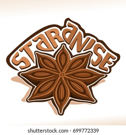 Vector logo for Star Anise: wooden dry pod with brown seeds of aniseed, label with title text - star anise on white, chinese condiment badian, spicy ingredient for drink or baking, indian seasoning.
