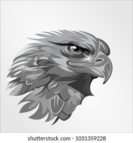 vector logo template creative illustration. Animal wild cat head face graphic grayscale eagle hawk falcon bird mascot image cartoon character abstract line