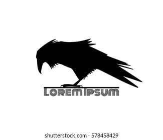 Vector logo template with hand drawn raven silhouette.