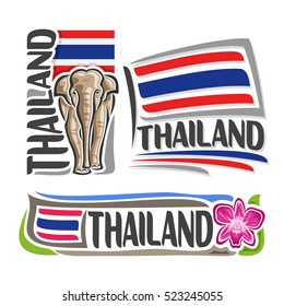 Vector logo Thailand, 3 isolated images: vertical banner royal white elephant on background Thai national state flag, symbol kingdom of thailand - violet thai orchid flower, stripes on ensign flags.