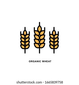 Vector logo Wheat ears linear icon for business, agriculture, beer, bakery, Gluten free. Black Line illustration isolated on white background.