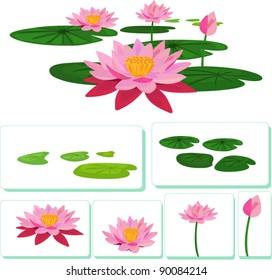 vector Lotus