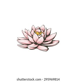 Vector lotus flowers on white background.