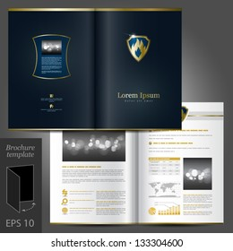 Vector luxurious brochure template design with fire element and shield. EPS 10