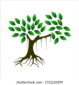 Vector of mangrove forest with a white background as a symbol or logo of environmental concern in coastal forests